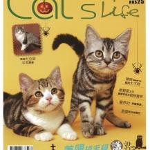 2013 November Magazine